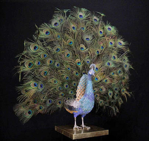 Blue Peacock Open Feathers by Clarita Brinkerhoff at Ocean Blue Galleries