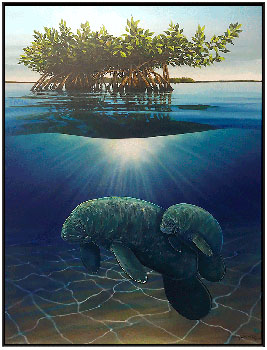 Manatees in the Mangroves copy