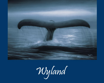 Art by Wyland at Ocean Blue Galleries Winter Park