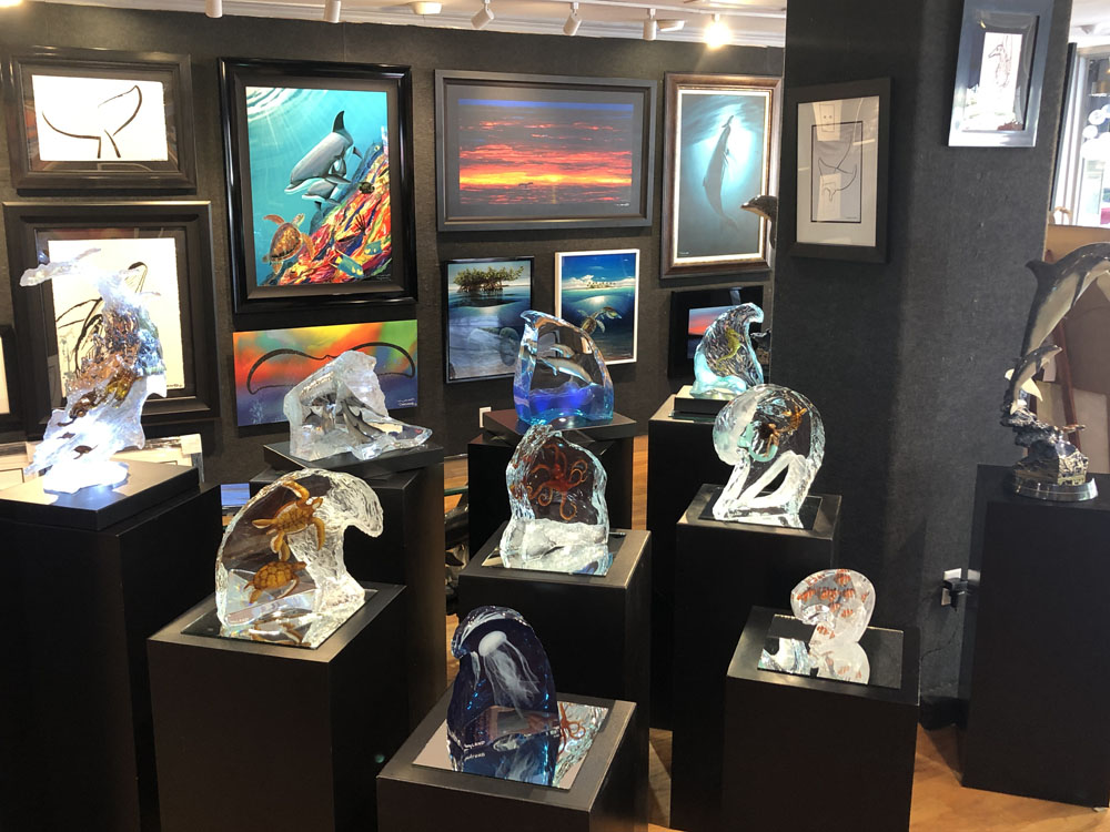 Ocean Blue Galleries Winter Park Art Gallery - Featuring Wyland Lucites