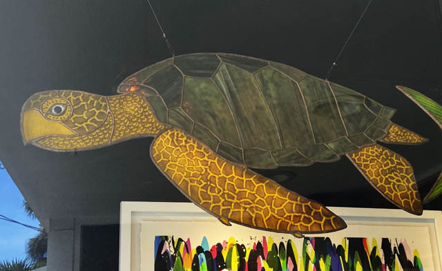 Turtle - David Oppenheimer Ocean Blue Galleries